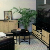 meubles industriels manguier et metal